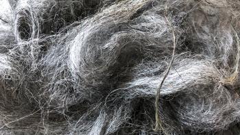Nærbilde av ubehandlet ull.